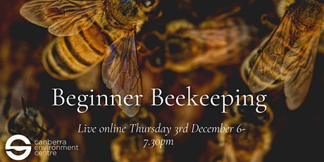 Beginner Beekeeping in Canberra tickets