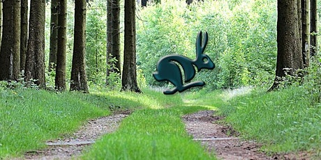 Ringwood Rabbit Run 2020 Postponed :-( tickets