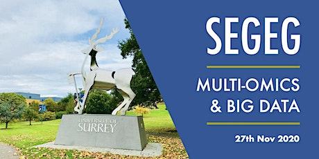 SEGEG 2020 Virtual Autumn meeting tickets