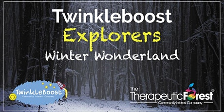 Twinkleboost Explorers Winter Wonderland: South Manchester Family (Sibling) tickets