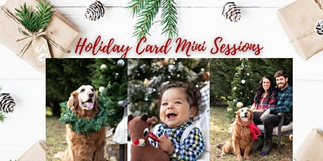 Christmas Card Mini Sessions | Hartville Ohio tickets