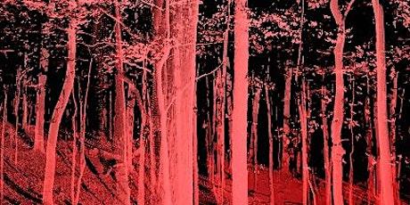 Inaugurazione mostra Tree Time biglietti