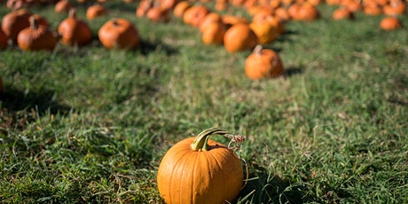 Halloween at Hermitage Farm's Barn8 Restaurant tickets