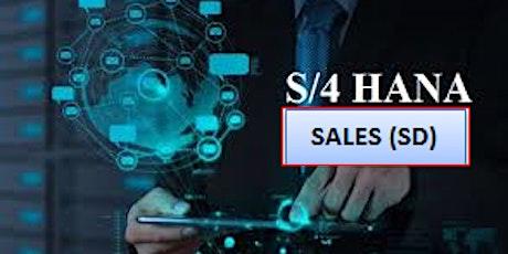 SAP S/4HANA SALES Certification Training tickets