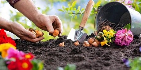 Learn How to Plant Bulbs tickets