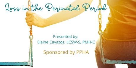 Loss in the Perinatal Period biglietti