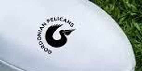P2 Pelicans Mini Rugby Training tickets