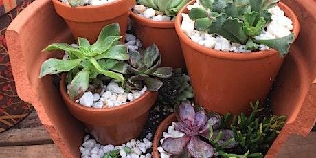 Broken Clay Pot Succulent Garden - Zoom Virtual  Workshop tickets