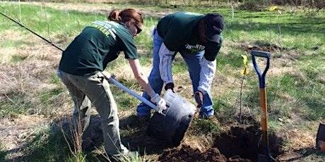 Tree Planting at Creve Coeur Lake Memorial Park tickets