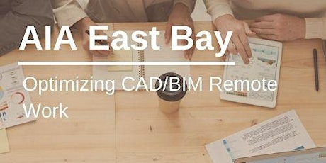 Optimizing CAD/BIM Remote Work (1 LU) tickets