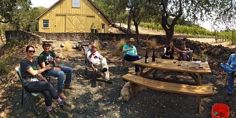 Outdoor tasting at the Vineyard tickets