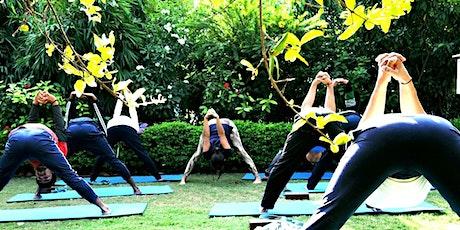 200 hour hatha yoga teacher training India tickets