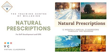 Natural Prescriptions - 12 monthly virtual classes tickets