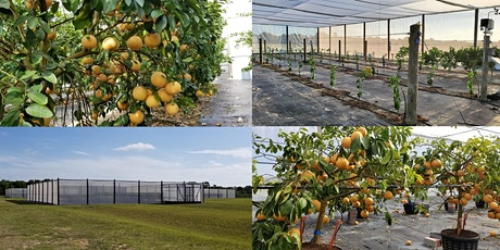 UF/IFAS Citrus Under Protective Screen (CUPS) Field Day tickets