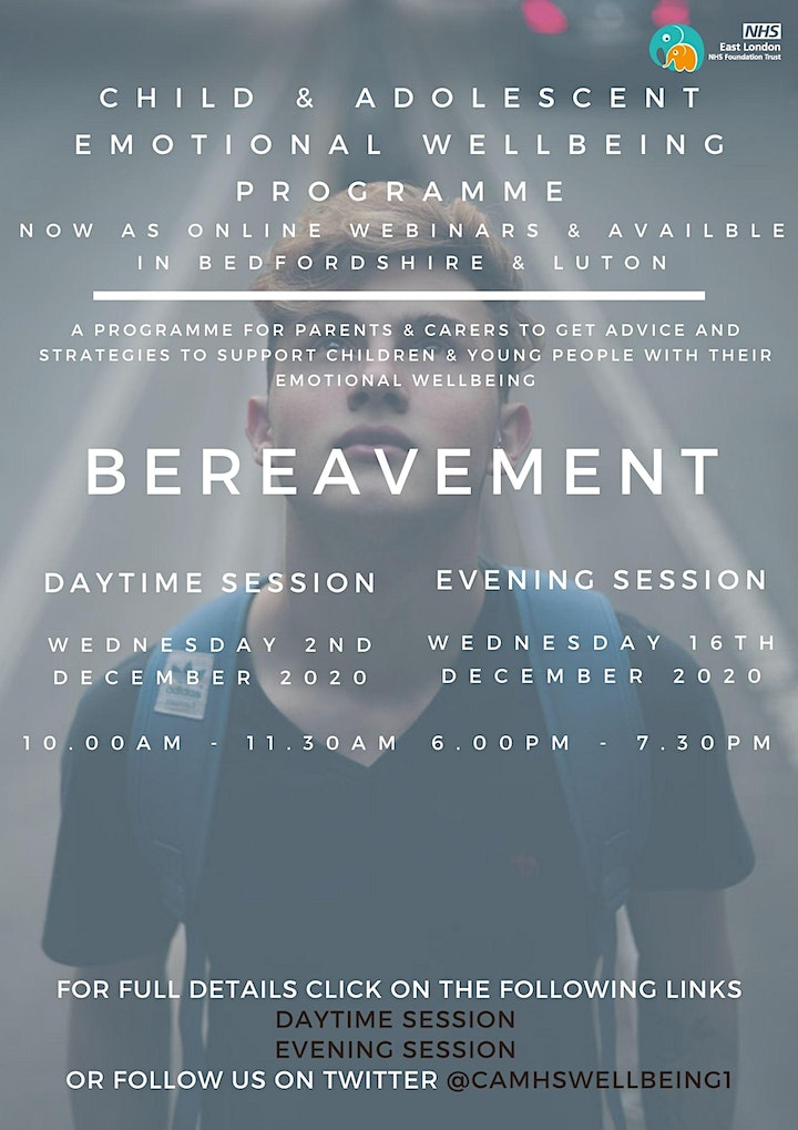 Bereavement (AM session) image