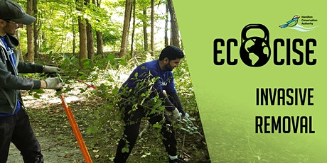 Ecocise Invasive Removal tickets