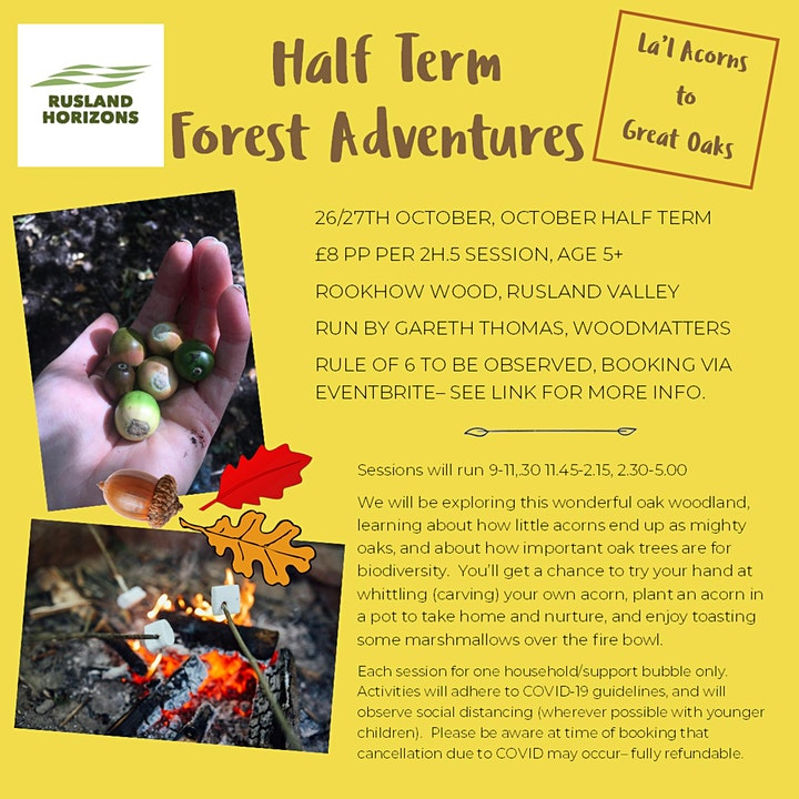 Half Term Forest Adventures image