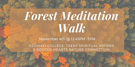 Forest Meditation Walk tickets