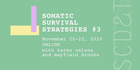 Somatic Survival Strategies #3 tickets
