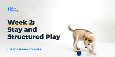 Tully's Training LIVE Week 2: Stay & Structured Play tickets
