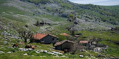 BORDAK - Chabolas y bordas de Euskal Herria entradas