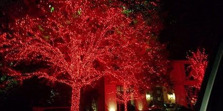 Christmas Lights, Chocolate & Sips Tour  -Adults Only tickets