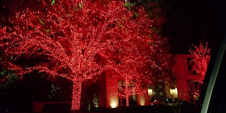 Christmas Lights, Chocolate & Sips Tour (Saturdays) -Adults Only tickets