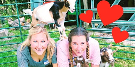 Goat Yoga Texas - Sat, Nov 7 @ 10am tickets