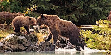 Where to Next Series - Alaska tickets