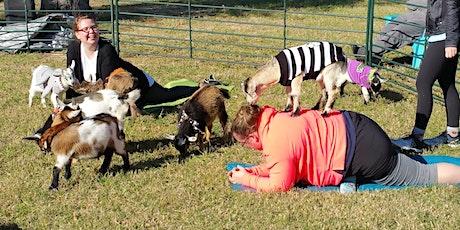 Spooky Goat Yoga! - Sat, Oct 31 @ 10am tickets
