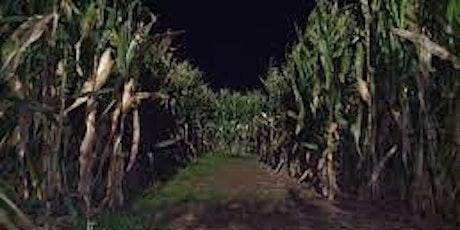 Corn Maze at Night tickets