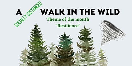 Walking Wellbeing Workshop - coaching in nature - resilience tickets