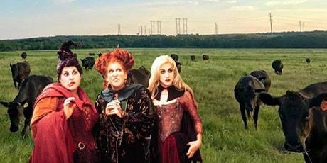 Hocus Pocus: A Drive-in Movie at the Ranch for Halloween! tickets