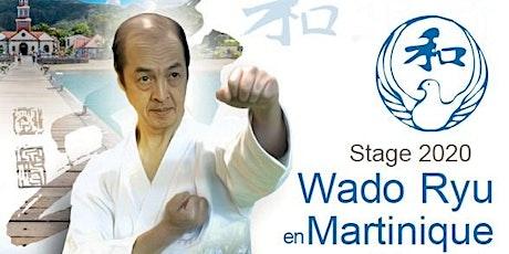 Stage Karaté Wado Ryu Martinique animé par Senseï Tran 7ème Dan billets