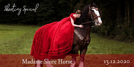 "Shooting Special ""Madame Shire Horse"" Tickets"