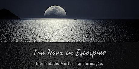 Círculo Online da Lua: Lua Nova em Escorpião bilhetes