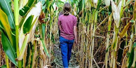 AFF-RI: It's Corn Maze Season tickets