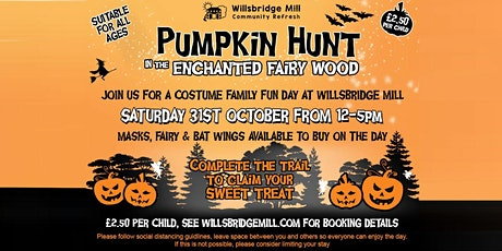 Pumpkin Hunt in the Enchanted Fairy Wood - 12 to 2.30pm tickets