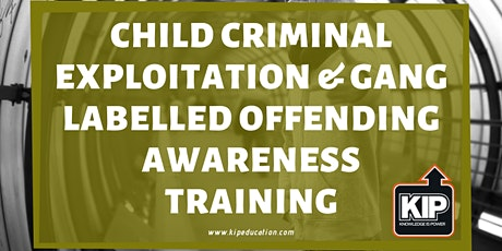 Child Criminal Exploitation & Gang Labelled Offending Awareness tickets