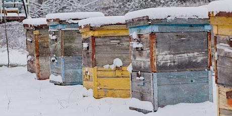 January - ONLINE Beekeeping - Prepping Honeybee Colonies for Winter tickets