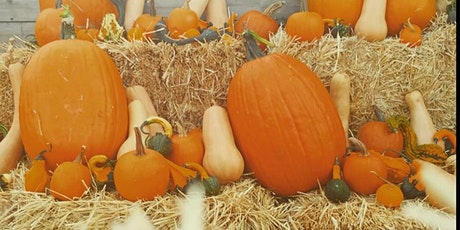 Pumpkin Decorating Workshop tickets