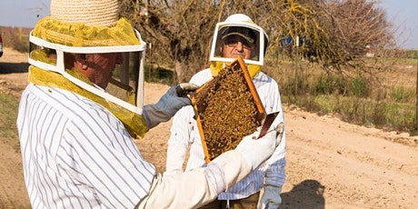 April- ONLINE Introduction to Beekeeping Class at The Bee Store tickets