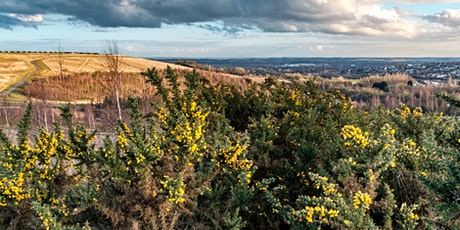 Gedling Country Park 5 Mile Walk tickets