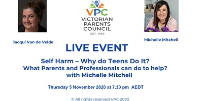 SELF HARM – why teens do it? What parents and professionals can do to help?