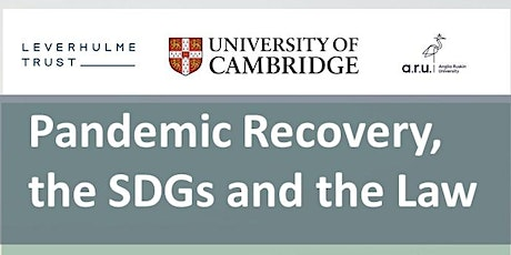 Pandemic Recovery, the SDGs and the Law tickets