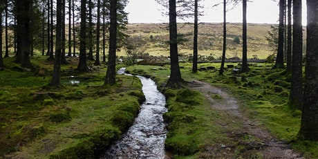 Pi Singles  Dartmoor Walk tickets