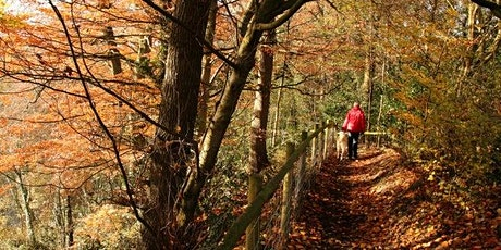 Timed entry to Quarry Bank (26 Oct - 1 Nov)