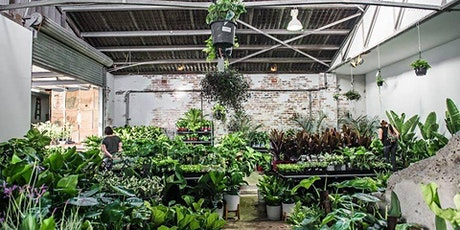 Sydney - Huge Indoor Plant Sale - Rumble in the Jungle tickets
