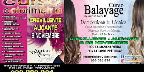 Balayages y Colorimetría con Adrian Nery(Técnico en Formaciones). entradas