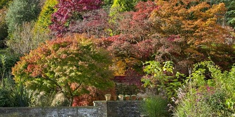 Timed entry to Standen House and Garden (26 Oct - 1 Nov) tickets